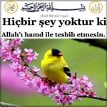 Allah'ın Binbir İsmi