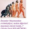 Maymundan İnsana Evrim Safsatası